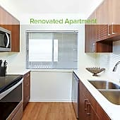 Two-bedroom Renovated kitchen with stainless steel appliances, new cabinetry, and hard surface vinyl plank flooring (in select homes)
