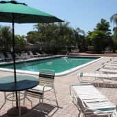 Incredible Swimming Pool