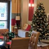 Christmas has hit Goldelm Cedar Bluff