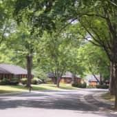 Historic treed neighborhood