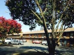 Jeanne Estates Apartments