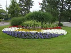 Village Green of Belleville