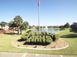 Carlton Arms Of Magnolia Valley