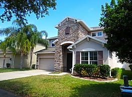 7981 Camden Woods Dr. - Tampa
