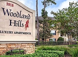 Woodland Hills Luxury Apartments Humble Tx