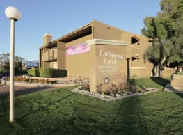 Cottonwood Creek - Tucson