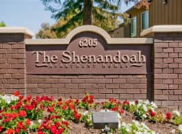 Shenandoah - Sacramento