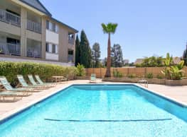 Domingo Pines - Newport Beach