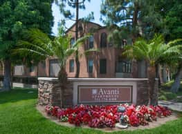 Avanti - Anaheim
