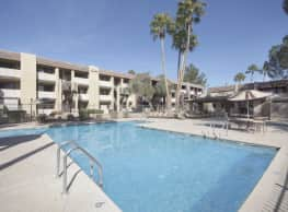 Stonybrook - Tucson