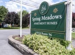 Spring Meadows - Romulus