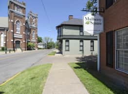 Mulberry Square - Evansville
