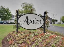 Avalon Apartments - Starkville