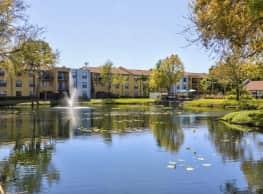 Belara Lakes - Tampa