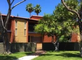 Mission Palms - Tucson