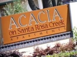 Acacia on Santa Rosa Creek - Santa Rosa