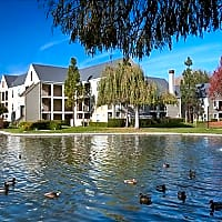 Riva Terra Apartments at Redwood Shores - Redwood City, CA 94065