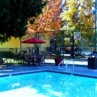 Citrus Grove Apartments - Redlands, CA 92374