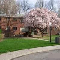Amber Court Apartments - Royal Oak, MI 48073