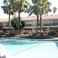 Palms At Chimney Rock - Houston, TX 77081
