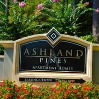 Ashland Pines - Stone Mountain, GA 30088