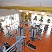 Linkhorn Bay Apartments - Virginia Beach, VA 23451