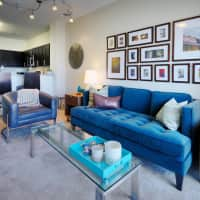 335 Apartments - Charlotte, NC 28203