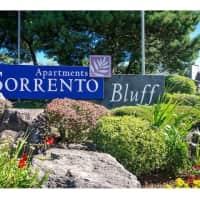 Sorrento Bluff - Beaverton, OR 97008