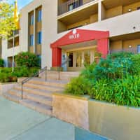 Zelzah Court - Northridge, CA 91325