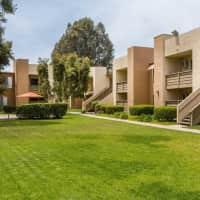 Mariposa - Vista, CA 92083