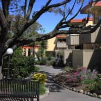 Sandpiper Apartments - Sacramento, CA 95821