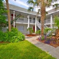 Avesta University Gardens - Tampa, FL 33612