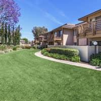 Cypress Pines Apartment Homes - Cypress, CA 90630