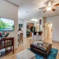 Lookout Hollow Apartments - Selma, TX 78154