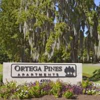 Ortega Pines - Jacksonville, FL 32210