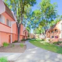 Blossom Hill - San Jose, CA 95123