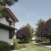 Vizcaya - Reno, NV 89523