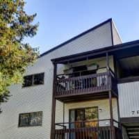 Briarwood Apartments - Portage, MI 49024