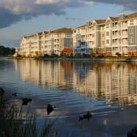River House Apartments - Norfolk, VA 23504
