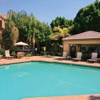 Strayhorse - Glendale, AZ 85308
