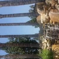 Bella Park - Rialto, CA 92376