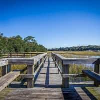 Hibben Ferry - Mount Pleasant, SC 29464