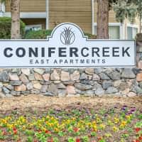 Conifer Creek - Aurora, CO 80014