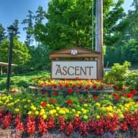 Ascent Apartment Homes - Kirkland, WA 98034
