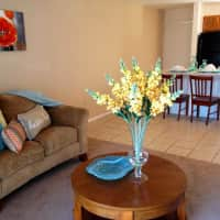 Fox Hollow Apartments - Gainesville, FL 32607