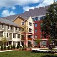 Auburn Court - Cambridge, MA 02139