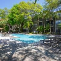 South Pointe - Tampa, FL 33611