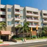 Regency Palm Court - Los Angeles, CA 90019