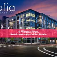 Sofia - Los Angeles, CA 90017