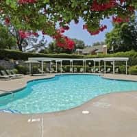 Lake Pointe Apartments - Folsom, CA 95630